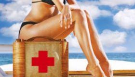 Перевозка лекарств: основные правила