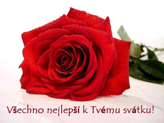 Svatek